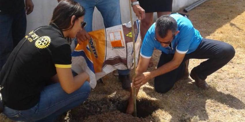 Rotary Club e Secretaria Municipal de Educação  realizam plantio de árvores na Creche Victor Gabriel