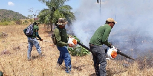 Semma decreta Estado de Situação de Emergência Ambiental
