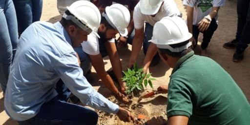 Trote ecológico promove plantio de ipês em Redenção